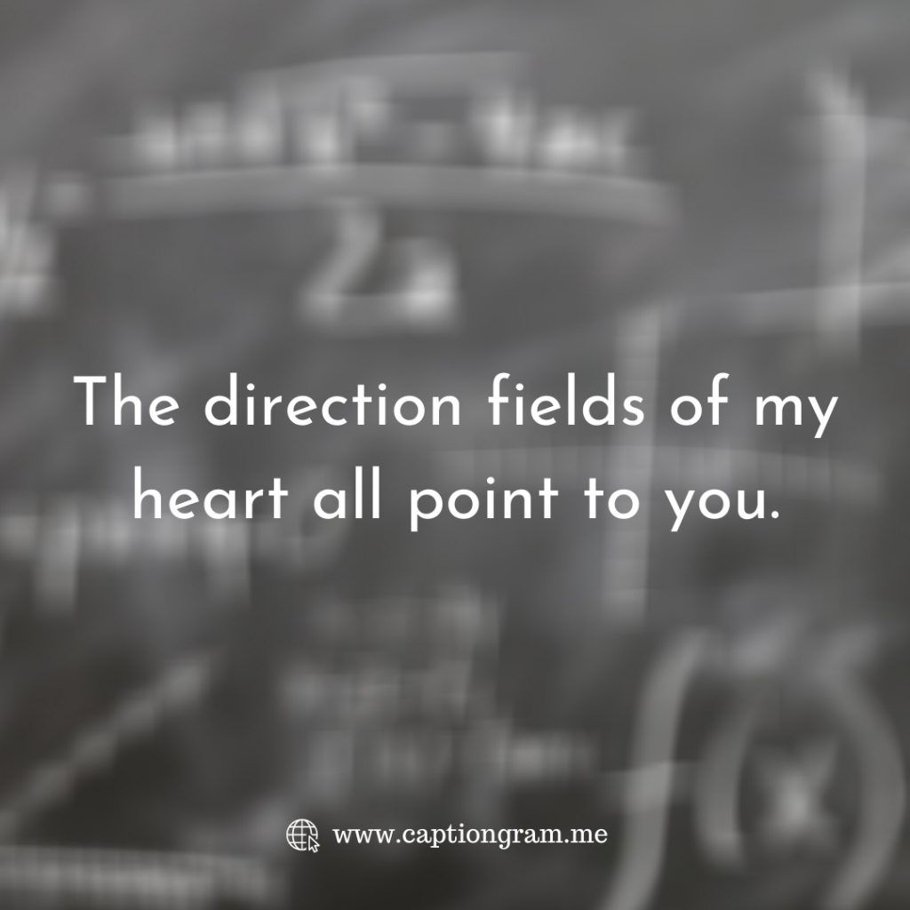 the direction fields of my heart all point to you.